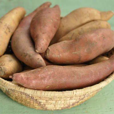 La batata es una buena fuente de carbohidratos complejos - Foto: Getty Images