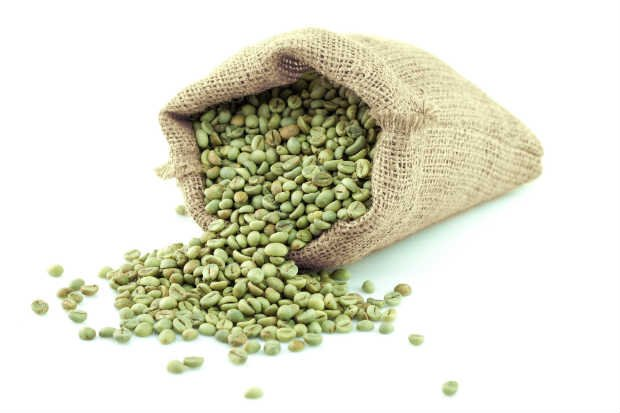 Café Verde - Foto: Shutterstock