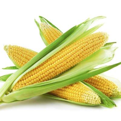 La maltodextrina generalmente está hecha de almidón de maíz - Foto: Getty Images