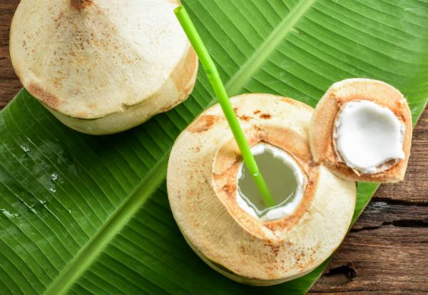 El agua de coco es una excelente fuente de hidratación - Foto: Shutterstock