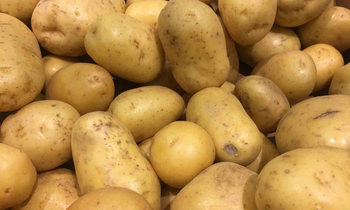 Ágata de patata - Foto: Titus Group / Shutterstock