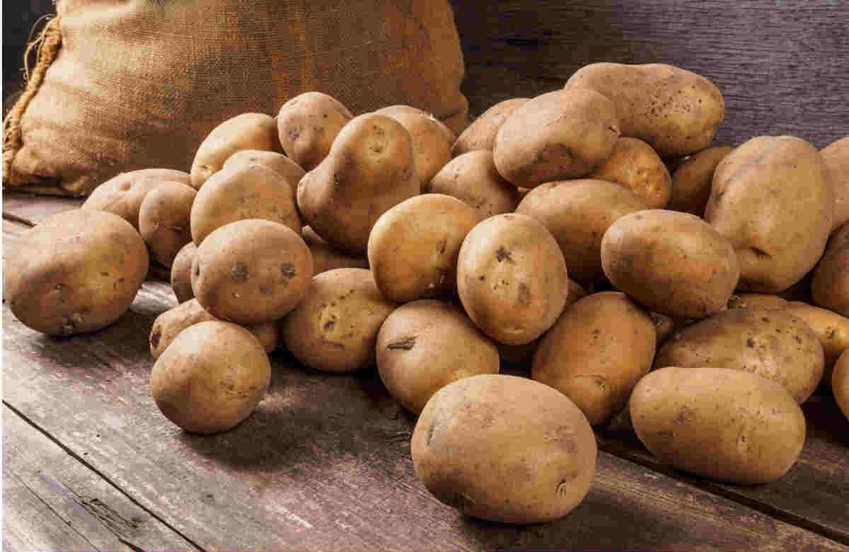 Patatas, beneficios y recetas - Foto: Dmitriy Gutkovskiy / Shutterstock