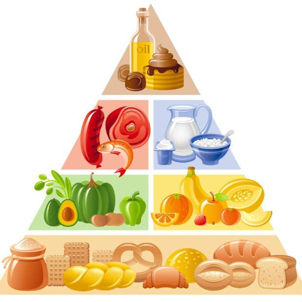Pirámide Alimenticia - Foto: Shutterstock / OlgaChernyak