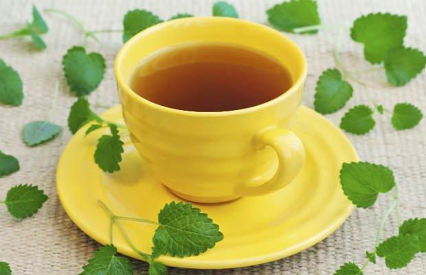 El bálsamo de limón tiene acción antioxidante - Foto: Getty Images
